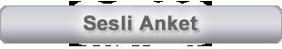 sesli_anket-fw
