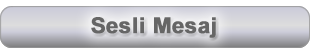 sesli_mesaj-fw